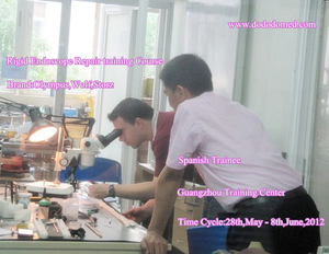medical training schools ( rigid endoscope)